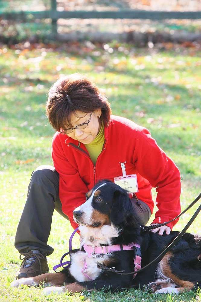 犬と人の写真